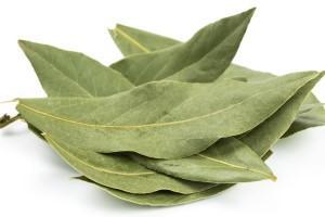 Laurel leaf to eliminate cockroaches